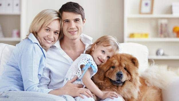 Wills & Trusts dog-young-family Direct Wills Sidcup